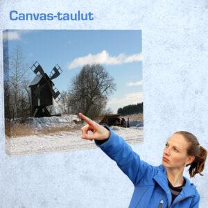 Canvas-taulut