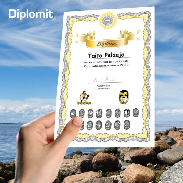 Diplomit